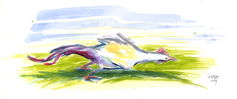 Zdepski's watercolor of a chicken in the wind