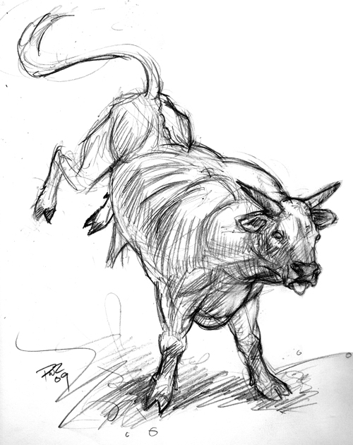 zdepski's drawing of a rodeo bull in pencil