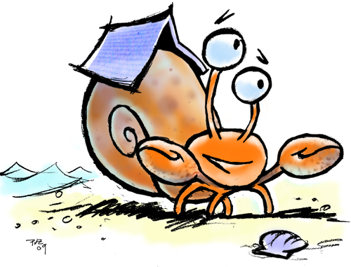 zdepski's illustration of a hermit crab on the beach
