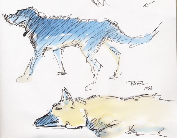 zdepski's watercolor sketches of his dogs