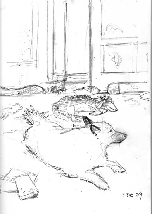 Zdepski's pencil drawing of Living Room Dogs 1