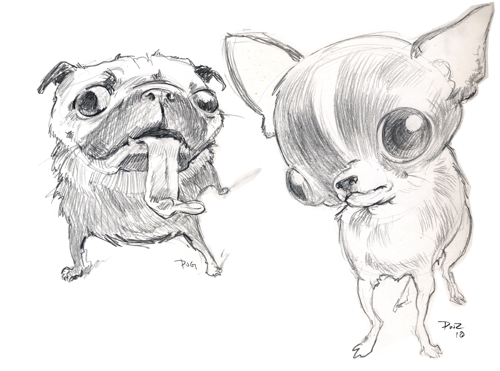 Zdepski's sketches of a Pug and Chihuahua