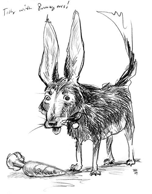 zdepski's drawing of dog, tilly with bunny ears